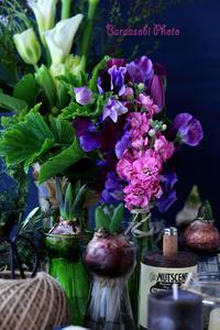 春を誘う - バラと遊ぶ庭