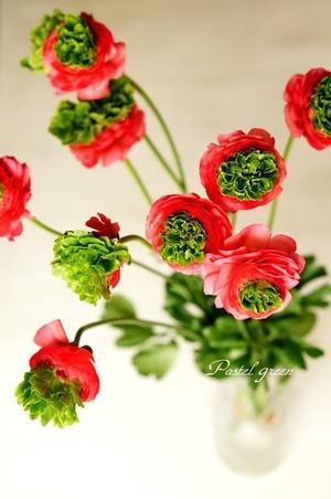 ラナンキュラス - Pastel green-Flower diary