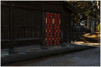ちょこっと川越 喜多院あたり #006 - ルリビタキの気まぐれPATA*PATA