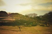 梅林のある公園 - GreenLife