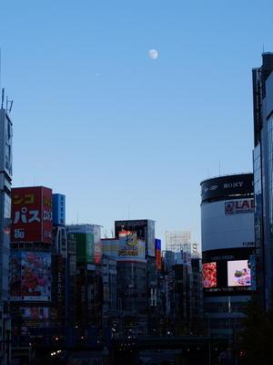 新宿の奇跡 - minamiazabu de 散歩 with FUJIFILM