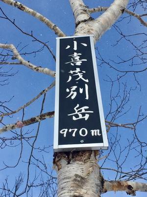ポンキモ《小喜茂別岳》 - matu-mont