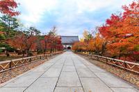 京都の紅葉2016 晩秋の智積院(写真部門) - 花景色-K.W.C. PhotoBlog