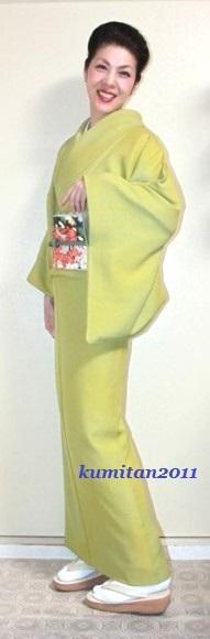 今日の着物コーディネート♪(2017.1.20)~色無地&アンティーク帯編~《ファッション・ビューティ部門》 - 着物、ときどきチロ美&チャ美。。。リサイクル着物ハタノシイナ♪