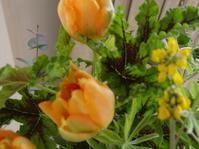 花を買って帰る Aoyama Flower Market - LilyのSweet Style