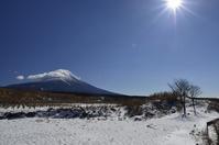 ふもとっぱら、忍野 - 富士山に夢中