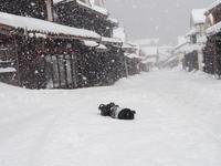 1月15日 雪 吹屋 の4 - 風まかせ、カメラまかせ