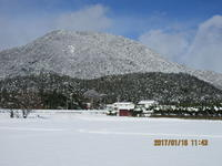大雪の翌日の妙見山 - 妙見山麓をわたる風