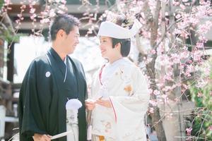 和装×桜 - maru*photo   カメラマン住本真理子