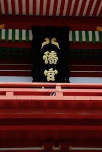 古都の春〜鎌倉 - 木洩れ日のなかで