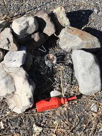 MSR DragonFly® ドラゴンフライ その2 火入れの儀 - 週末は山にいます