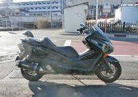 そー君号 FORZA250(フォルツァ250)をメンテからのSら田サン号 セロー250をメンテ♪(笑) - バイクパーツ買取・販売&バイクバッテリーのフロントロウ!