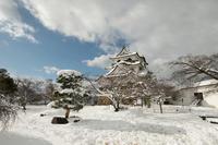 彦根城 - とりあえず撮ってみました