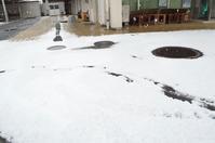 2017,1,15 広島 雪景色その5 - 死すべきキモオタ~或いは怠惰な脂肪の塊~