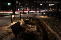 富山散歩~県東部379~雪の富山城 - Tomの一人旅~気のむくまま、足のむくまま~