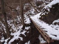 雪の奥多摩 ② 細倉橋~百尋の滝~川苔山山頂 - 犬の一歩