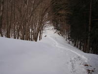 雪の奥多摩 ③ 川苔山山頂~鳩ノ巣駅 - 犬の一歩