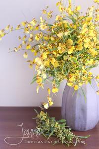 FLOWER #22 オンシジュームとミモザのYellow bouquet - フォトジェニックな日々