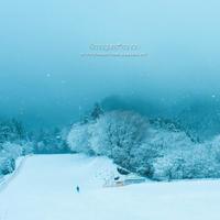 雪時間**in 琴引フォレストパーク - きまぐれ*風音・・kanon・・