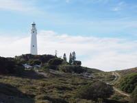 ロットネスト島の中央にあるもの〜ロットネスト島サイクリングのススメ⑦ - 南米・中東・ちょこっとヨーロッパのアイスクリーム旅