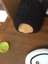 大きな~きな粉餅 - おはけねこ