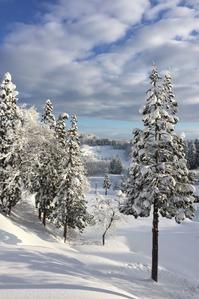 雪国 - 松之山の四季2