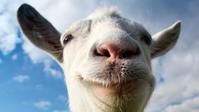 瞑想ビジョン「ヤギの様に・・・」 - ゆかりぃ、アカシックリーダーへの道  ~夢に向かって