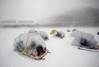 烈風 vs カタツムリ - ぼんぼんトントン 写真