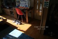 ぽかぽか陽射しが好き~ ^^ (動物・ペット部門) - FUNKY'S BLUE SKY