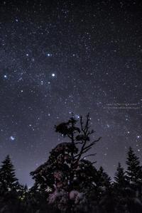 樹氷の森の銀河Ⅱ (写真部門) - HI KA RI