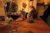 Wine Bar Cyama - little good things
