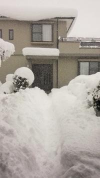 雪かいて また雪かいて 雪をかく - 視線の先には