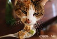 グラノーラを見せたら(動物・ペット部門) - Kyoko's Backyard ~アメリカで田舎暮らし~