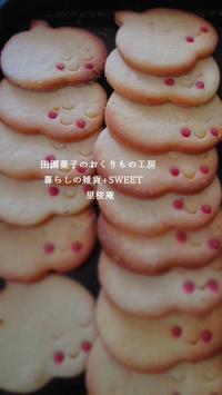 柚子クッキー - 田園菓子のおくりもの工房 里桜庵