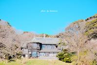 古我邸 〜神奈川県鎌倉市〜 - Photographie de la couleur