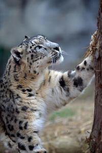 久しぶりの - 動物園へ行こう