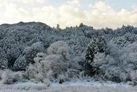 雪景色 - 源爺の写真館