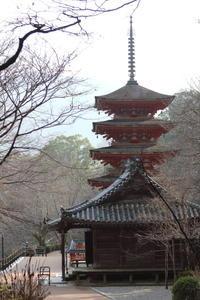 長谷寺 五重塔があります。 - 平凡な日々の中で