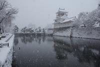 2017.1.23富山県富山市 大雪 - Mountain Rose