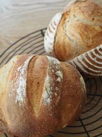パンとスープでランチ - 今日は昨日より少し遠くへ行ってみよう