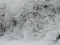 雪の結晶 - 絵を描きながら