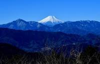 シモバシラ - 旅のかほり