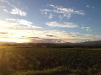 【チャリ】ランドヌール宮城 BRM820羽前陸前周回400km【ブルベ】 - 同人サークルビテイコツハンターの自転車漕ぎ係「一梨乃みなぎ」のブログ的な何か