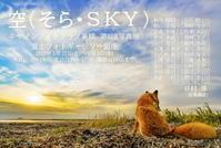 「空」の写真展 - merryの徒然日記