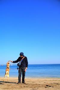 おすすめの海。 - 結局ただの犬バカです。