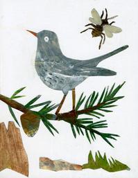 personal work 「bird」 - yuki kitazumi  blog