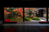 京都の紅葉2016 妙顕寺の晩秋光景 - 花景色-K.W.C. PhotoBlog