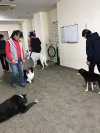 1月のグループレッスン~水曜日組~ - kleiner heine