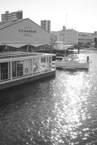 Tennozu Isle - Photo*Latte