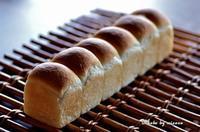 ミニ山食 - 森の中でパンを楽しむ